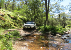 4WD tours Blue Mountains | Detour Adventures